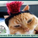 Шапочки для кошек вяжем крючком с помпоном,ирокезом,бантиком- схемы