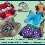 Сшить платье для собаки .О том как сделать выкройку и использовать для этого остатки ткани или старые вещи