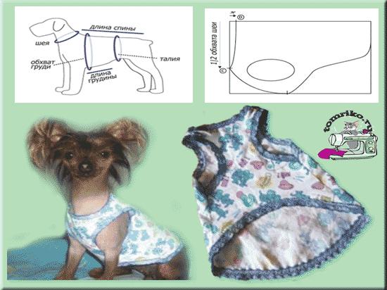 Сшить платье для собаки